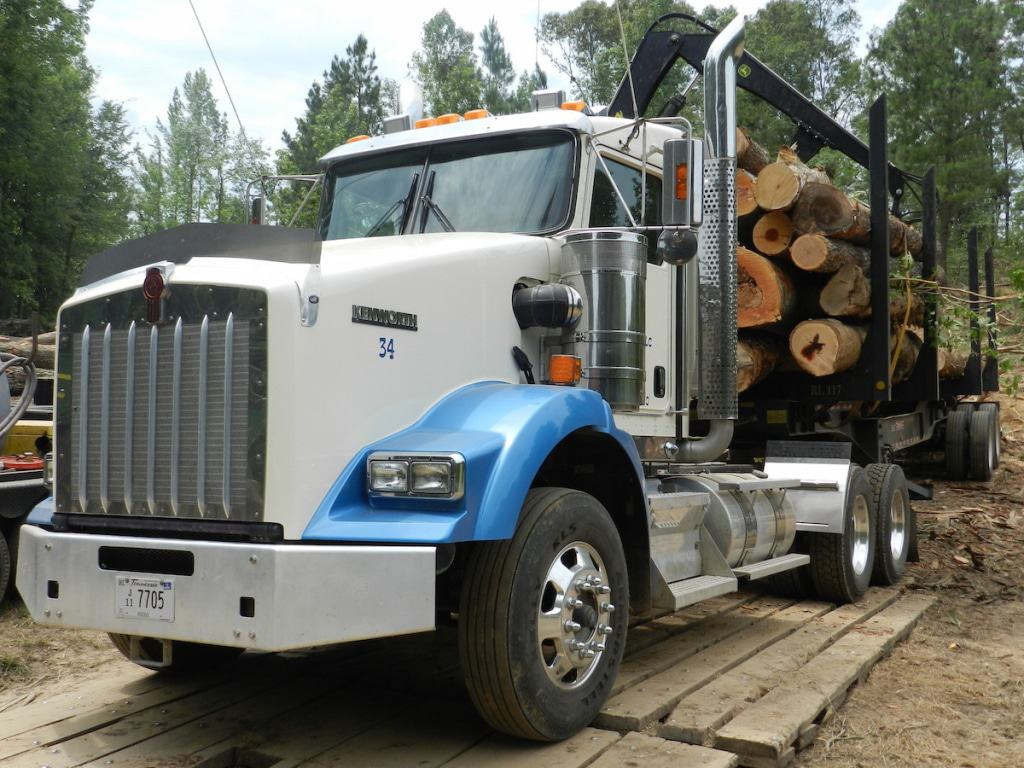 Timber Buyer Auburn Alabama,