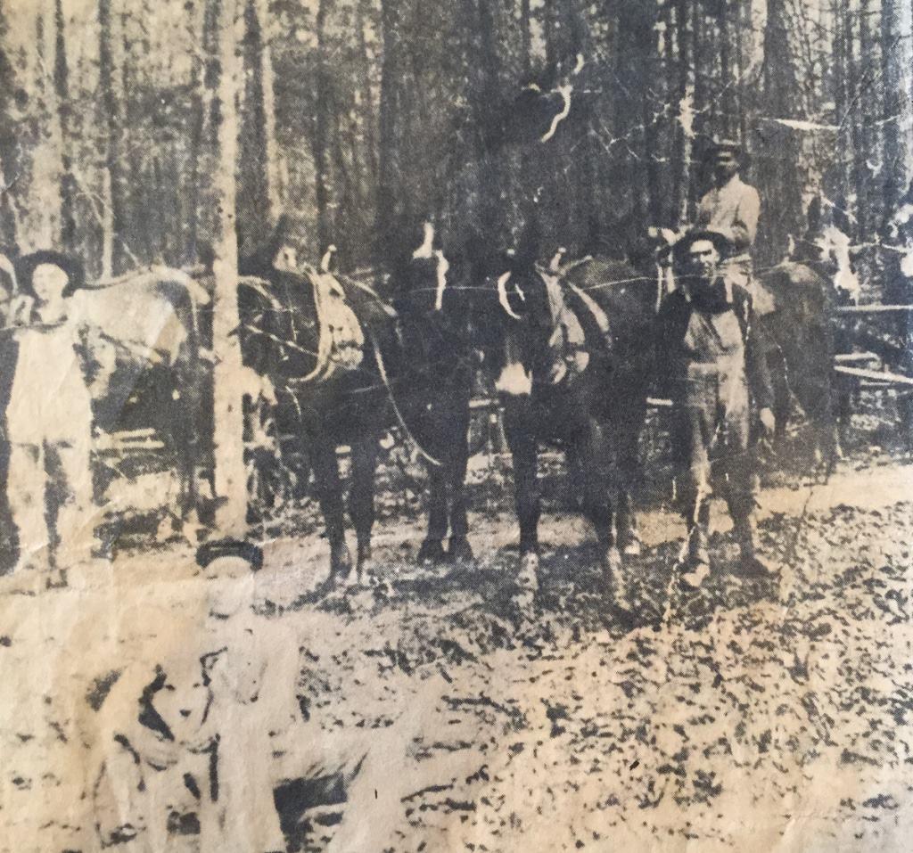 Hooper Farm Circa 1916