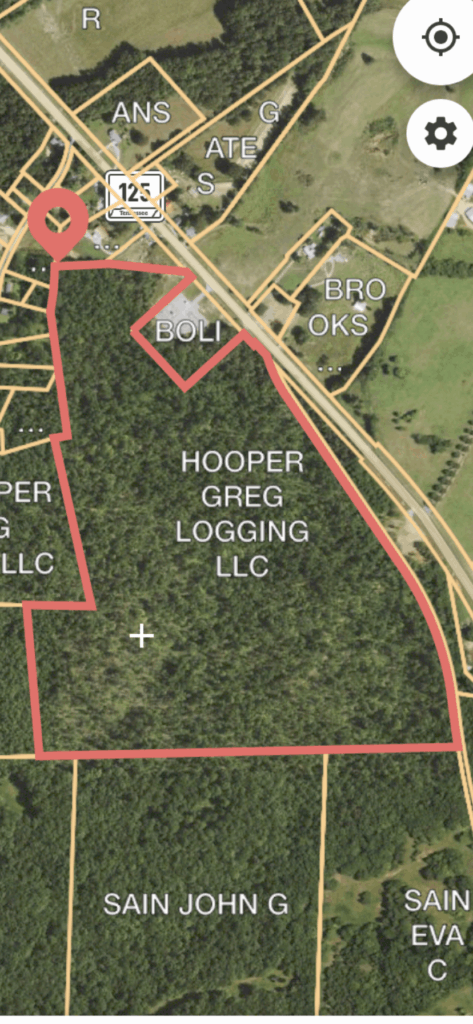 Hwy 125 100 acres for sale West TN