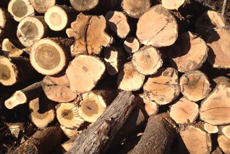 Timber Marketing
